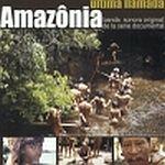 Amazonia, la útima llamada