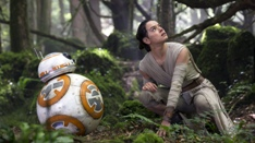 starwars7-rey-bosque