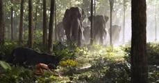 thejunglebook-elefantes