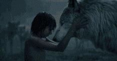 thejunglebook-mowgli-raksha
