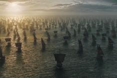 got6-barcos